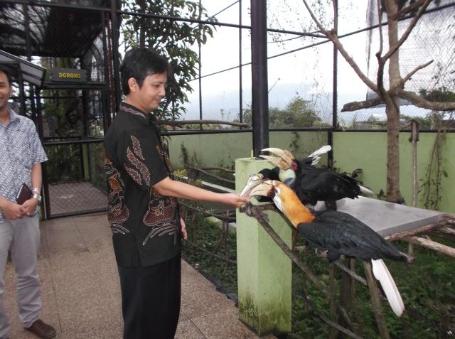 Pengunjung dapat memberi makan burung.
