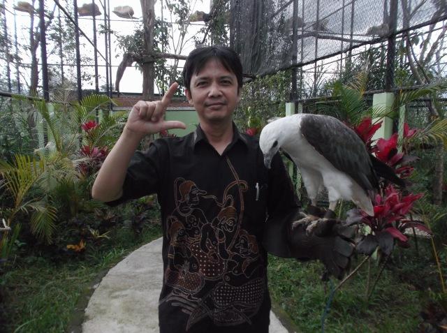 Saya dan elang putih yang terancam punah.