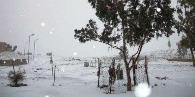 Salju menyelimuti Semenajung Sinai, sekitar 400 km tenggara Kairo, pada Jumat (13/12/2013). | AFP PHOTO/STR (Sumber: http://internasional.kompas.com/read/2013/12/15/1237322/Salju.Turun.di.Kairo.untuk.Pertama.Kalinya)