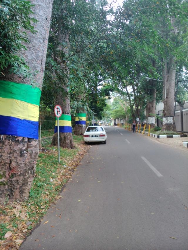 Deretan pohon di Jalan Ciung Wanara, jalan ke kampus ITB Ganesha.