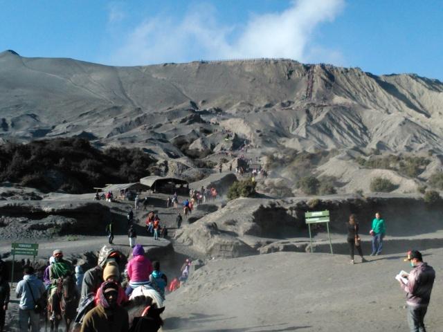 Berkuda mendaki puncak Gunung Bromo
