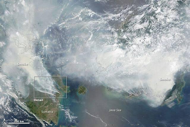 Foto satelit, penampakan asap di atas Pulau Sumatera dan Kalimantan. Mengerikan!